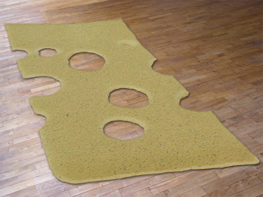 Carpet Say Cheese